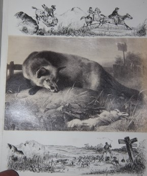 Album with Outstanding Pen-and-Ink Artwork Worked Around Albumen Prints of Artworks